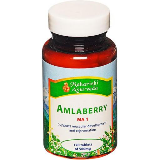 Amlaberry (MA1) 60g