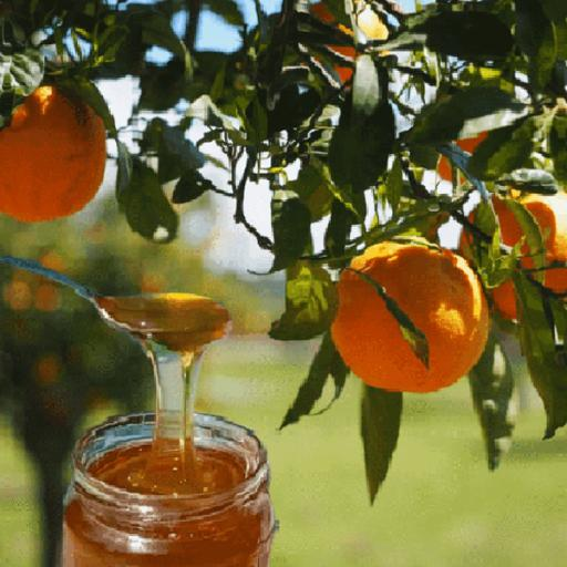 Orange-Blossom-Honey-Pouring.png
